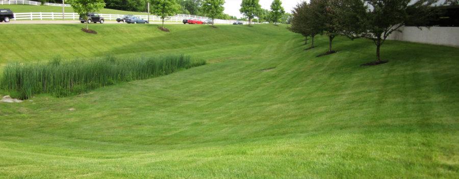 landscape sustainability